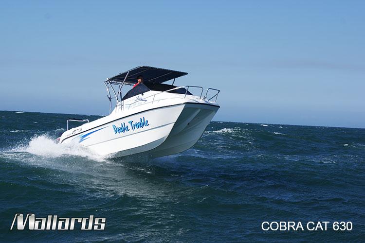 Cobra-Cat-630-new-logo-11