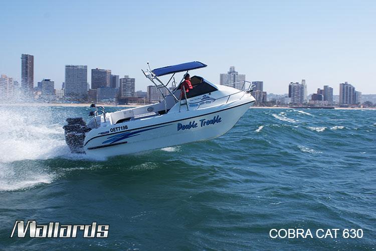 Cobra-Cat-630-new-logo-12