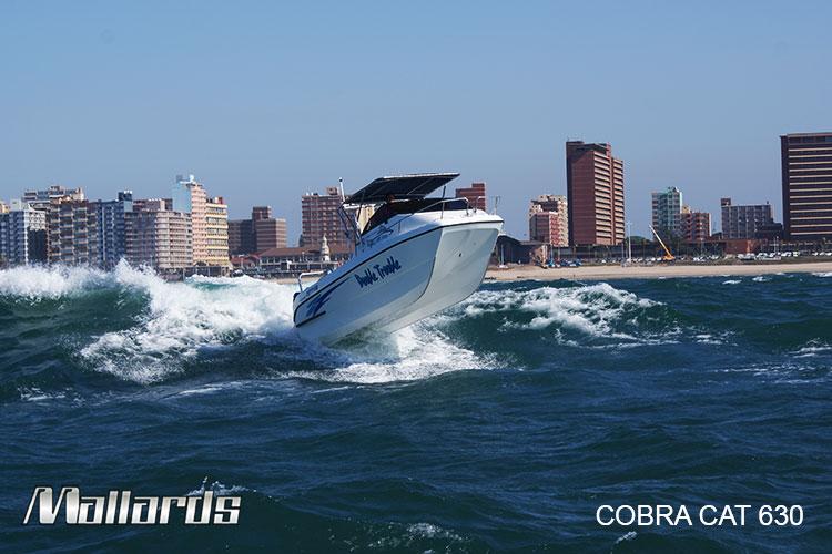 Cobra-Cat-630-new-logo-13