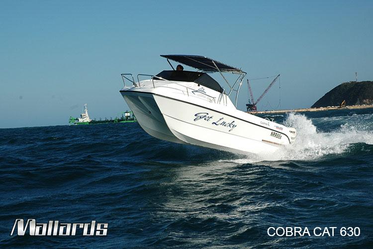 Cobra-Cat-630-new-logo-14