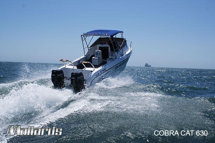 Cobra-Cat-630-new-logo-9