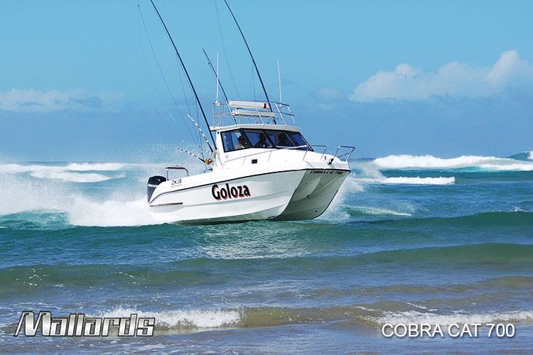 Cobra-Cat-700-new-logo-17